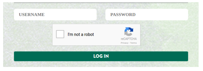 Using Google reCaptcha to authenticate user login on login form