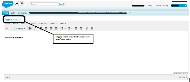 Salesforce   Toggle button to let TinyMCE editor switch between text