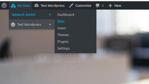 Introduction to wordpress multisite with an example